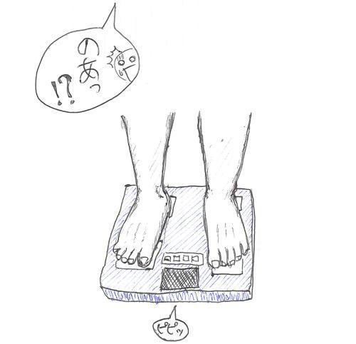 体重と体脂肪計.jpg