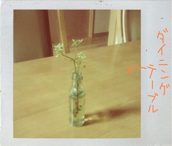花瓶?食卓.jpg